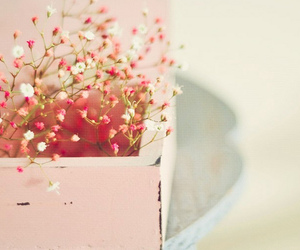 babys breath, flowers, and pink image