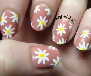 brown, daisy, and floral image