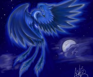 bird, phoenix, and romantic image