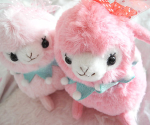 fluffy and cute image