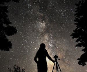 stars, trees, and galaxy image