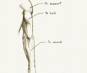 anatomy, arm, and guy image