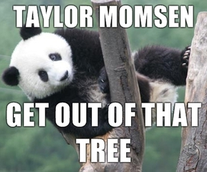 funny and Taylor Momsen image