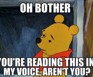 voice, winnie the pooh, and funny image
