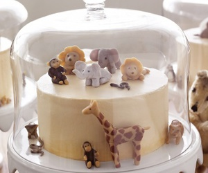 animals, cute, and cake image