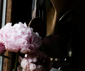 floral, flowers, and peony image