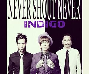 nsn and indigo image
