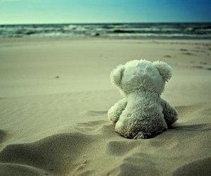 beach, bear, and alone image