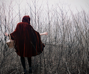 little red riding hood, fairy tale, and photography image