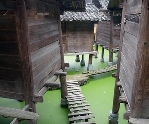 china, shanghai, and water town image