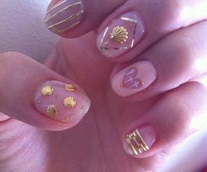 nails and shell image