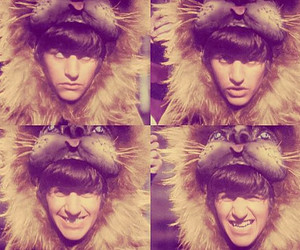 lion, ringo starr, and the beatles image