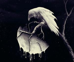 art, moon, and raven image
