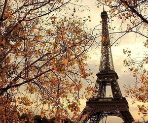 paris, autumn, and france image