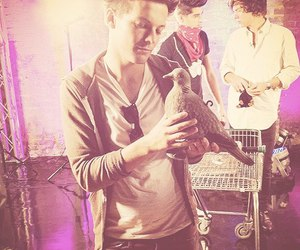kevin, louis, and one direction image