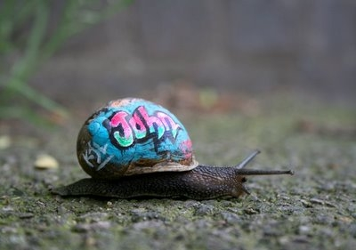snail, graffiti, and john image