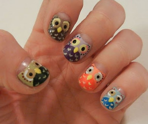 nails, owl, and beautiful image