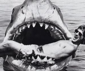 shark, black and white, and boy image
