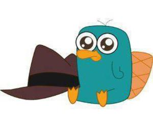 perry, baby, and Platypus image