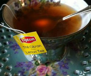 autumn, citron, and cup image