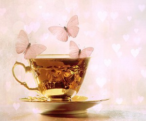 butterfly, gold, and cup image