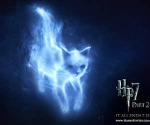 harry potter, cat, and patronus image