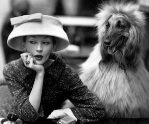 dog, vintage, and woman image
