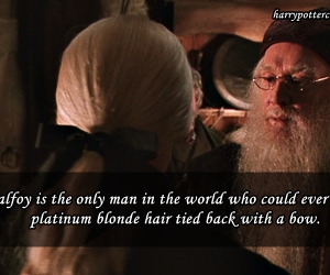 bow, dumbledore, and hair image