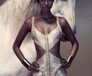 fashion, horse, and model image
