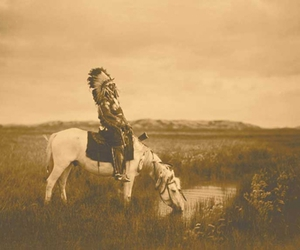 horse, indian, and native american image