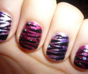 nail and zebra image