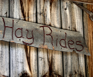 fall, autumn, and hay rides image