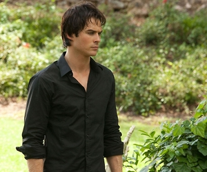 the vampire diaries, damon salvatore, and Hot image