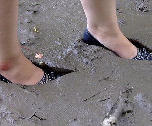 mud and shoes image