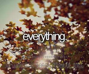 autumn, fall, and everything image