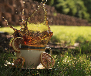 cup and splash image