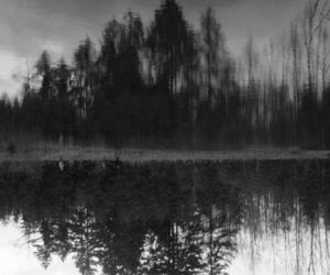 black and white, forest, and lake image