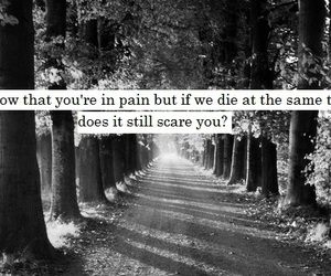 quote, black and white, and die image