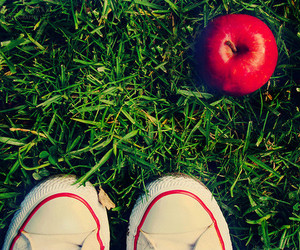 apple, nature, and shoes image