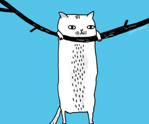 cat, funny, and hang in there image