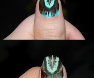 feathers and nails image