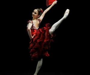 ballet and don quixote image