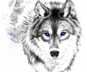 black and white, tattoo, and wolf tattoo image