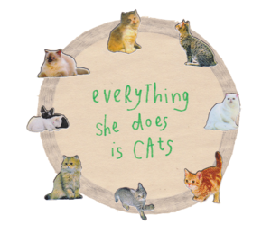 cat, kitten, and everything image
