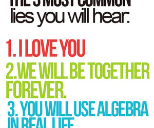 lies, forever, and algebra image