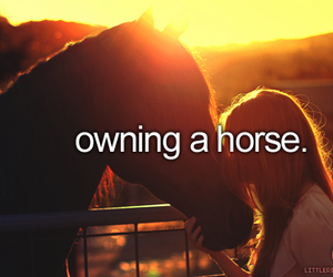 girl, horse, and owning image