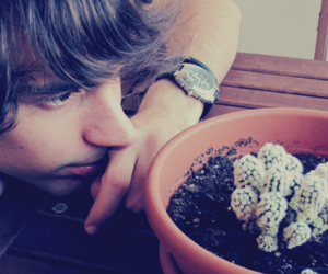 boy, pretty, and succulent plant image