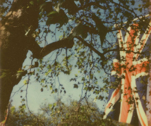 london, tree, and love image