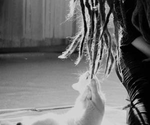cat, rasta girl, and chic image