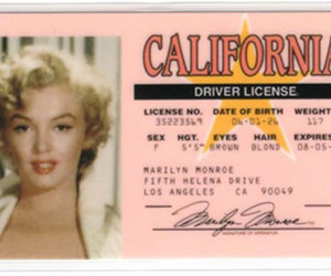 Marilyn Monroe, california, and pink image